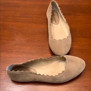 Scallop brown flats